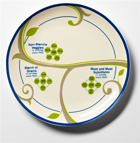 Basic FOCUS Portion Control Set for 2 Porcelain Plates Bowls \u0026 Nutrition Info.   TypeFree Diabetes  sc 1 st  Type Free Diabetes & Basic FOCUS Portion Control Set for 2 Porcelain Plates Bowls ...