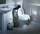 "Raised Toilet Seat (5 1/2"")"